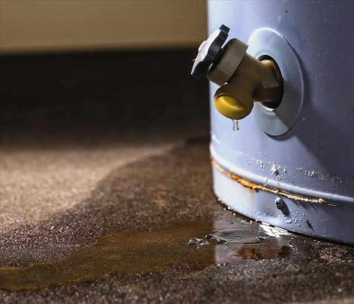 Why SERVPRO Here is What You Should do for Your Brandon Water Damage Problem